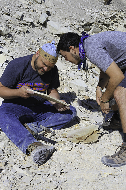 Students working in quarry