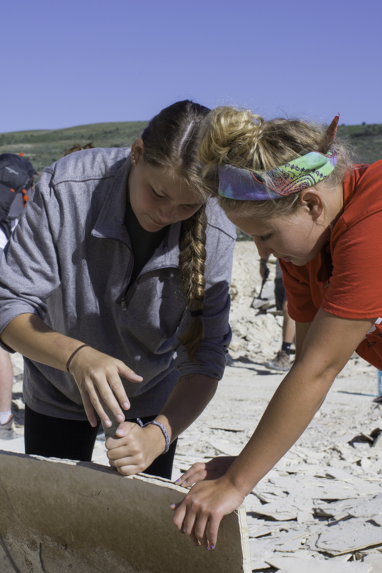 Students collecting fossils